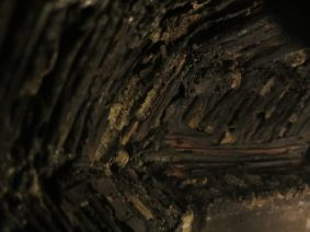 Interior Texture: Burnt Wood