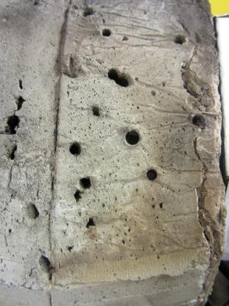 Exterior Texture: Holes